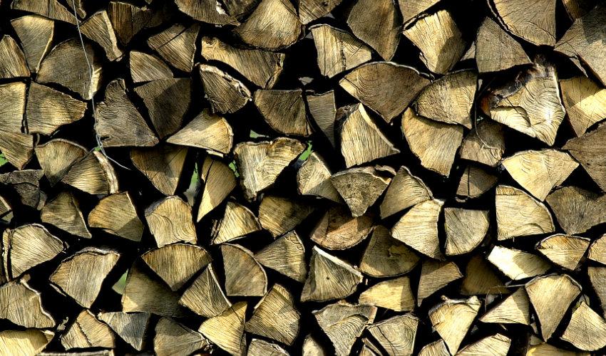 Aktuelle Informationen zur Holzerntesaison 2020/21